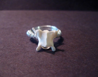Bone ring - wire wrapped bone jewelry- Vertebrae Wire Wrapped Ring-