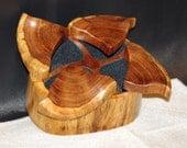 Mesquite Wood Treasure Jewelry box rambunctious