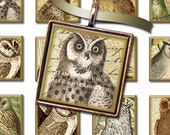 1x1 Inch Squares - Victorian Textured Owls with Antique Maps, Scroll and Script - Digital Collage Sheet - Instant Download & Print