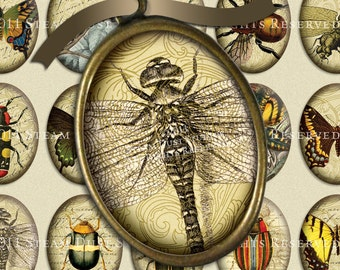 Steampunk Victorian Entomology with Scrolls, Antique Script & Antique Maps - 30x40mm Oval Images - Digital Collage Sheet - Instant Download