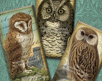 Steampunk Victorian Textured Owls with Antique Maps, Scroll and Script - 1x2 Inch Domino Tiles - Digital Collage Sheet, Steampunk Printables