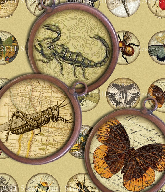 Victorian Entomology with Scrolls, Antique Script, Antique Maps - 32mm Circles - Digital Collage Sheet - Instant Download and Print
