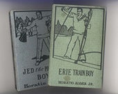 2 Vintage Childrens Series Books by Horatio Alger - The Erie Train Boy, Jed the Poorhouse Boy 1923 M. A. Donohue Company