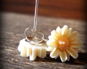 White and Cream Daisy Post Earrings