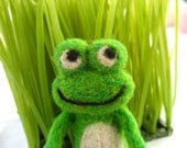 Green Felted Frog Toy