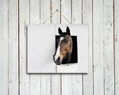 Morning greeting -  16x20 canvas print- Brown decor - Western decor - Horse wall art - Brown horse wall decor.