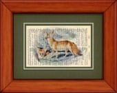 """Dictionary Art Print - Fennec Fox - 6 3/4"""" x 9 3/4"""" - Art Print on Upcycled Dictionary Page"""