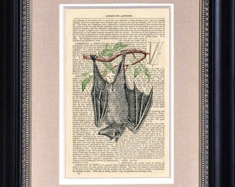 """Art Print - Just Hanging Around - 6 1/2"""" x 10"""" Encyclopedia Page - Art Print on Upcycled Encyclopedia Page - FRAME NOT INCLUDED"""