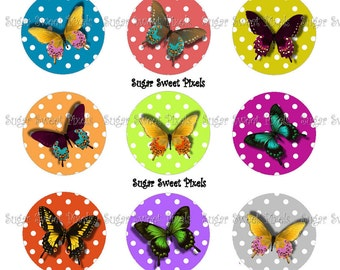 INSTANT DOWNLOAD Bright Butterfly 1inch Circle Bottlecap Images 4x6 sheet