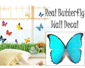 Real Blue Morpho Butterfly Sticker Wall Decal