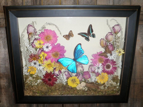 "Real butterflies and flowers in shadowbox 24""x36"""