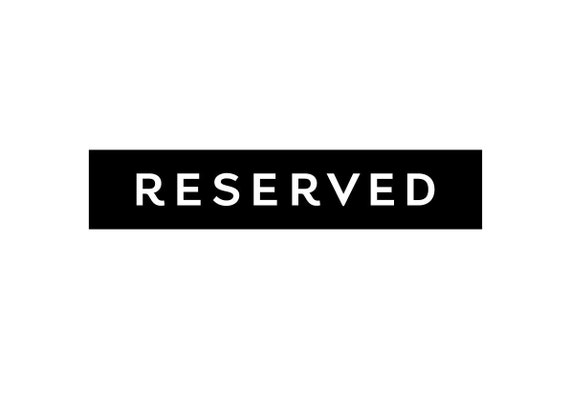 RESERVED Custom Order (Perry)