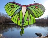 Green Asian Luna Moth Stained Glass Window Hanging