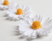 Crochet Pattern Daisy Flower 3D PDF Instant Download