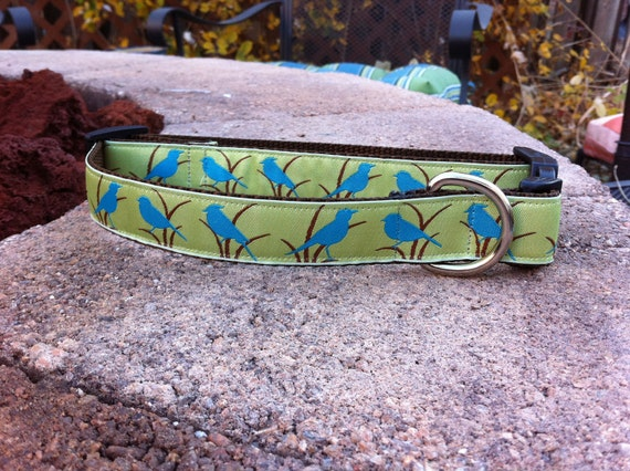 "1"" Width Dog Collar - Blue Birds on Green"