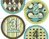 Baby Monthly Onesie Stickers