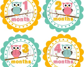 Monthly Baby Stickers Baby Girl Month Stickers Milestone Stickers Photo Growth Stickers Owls Pink Blue Yellow (Jessica)
