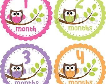 Baby Girl Month Stickers, Monthly Baby Stickers, Milestone Stickers, Baby Month Stickers, Monthly Bodysuit Sticker Owls (Clarissa)