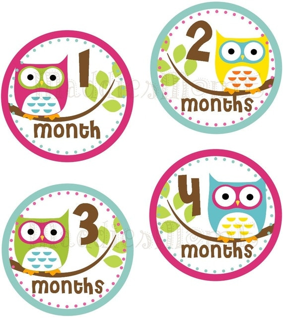 Monthly Baby Girl Stickers, Milestone Stickers, Baby Month Stickers, Monthly Bodysuit Sticker, Monthly Stickers Owls (Summer)