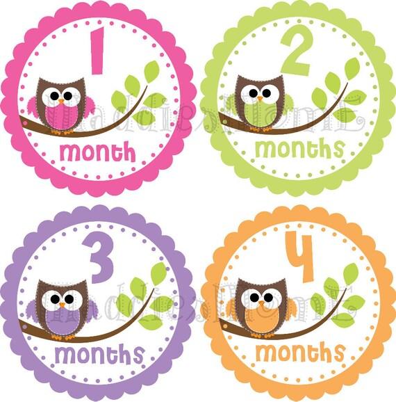Baby Girl Month Stickers Monthly Baby Stickers Milestone Stickers Baby Month Sticker Monthly Bodysuit Sticker Owls (Clarissa)
