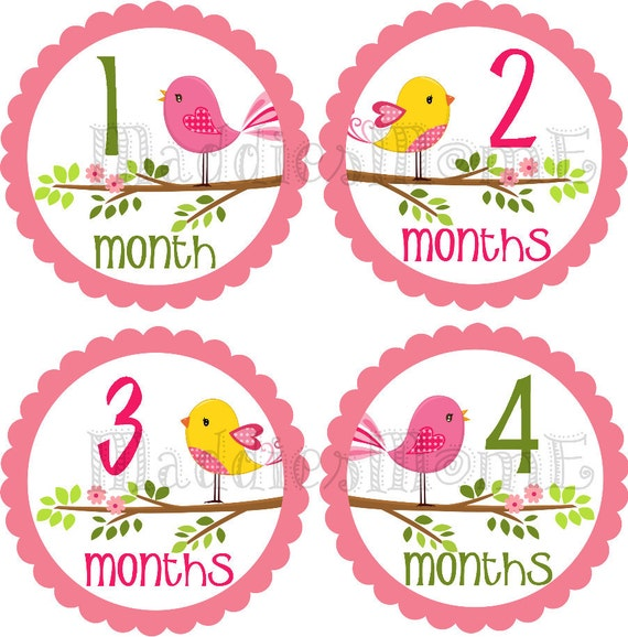 Monthly Baby Girl Stickers, Milestone Stickers, Baby Month Stickers, Monthly Bodysuit Sticker, Monthly Stickers Birds (Elizabeth)