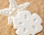 Sand Dollar Beach Wedding Cookie Favors // 1 doz. // Wedding Favors // Party Birthday Boy Girl Wedding Shower Ocean Sea // Preservative Free