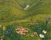 Alpine Flowers Botanical Print Lithograph Tyrol  by Ernst Heyn 1892