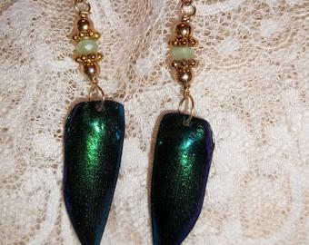 14k gold filled earrings with vermeil, crystal and genuine Beetle Wings