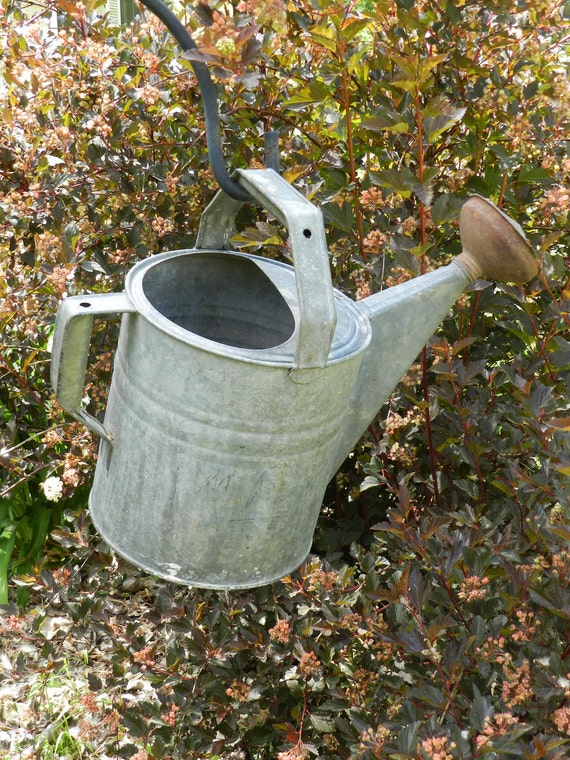 Antique Galvanized Metal Watering Can - 8 Qt.