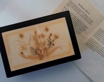 "Vintage ""Wonders of Nature"" Signed Original Handmade Pressed Flower & Walnut Wood Trinket Jewelry Box"