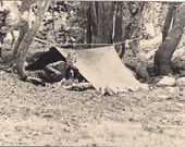 Vintage/ Antique Photo of a boy with his dog and pop up tent camping
