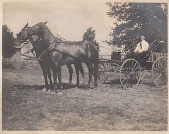 Vintage/Antique photo of a man in a 2 horse carriage
