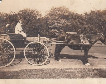 Vintage/Antique photo of a cute boy in a horse carriage