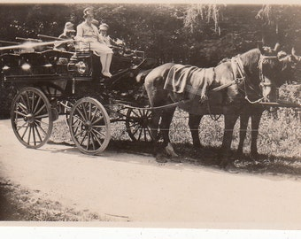 Vintage/Antique photo of a beautiful grand horse carriage