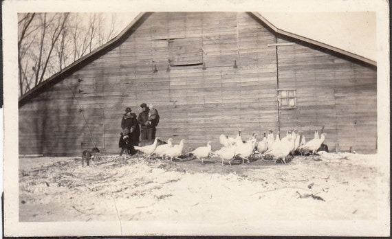 Vintage/Antique photo of a family at the front of a barn with a lot of turkeys