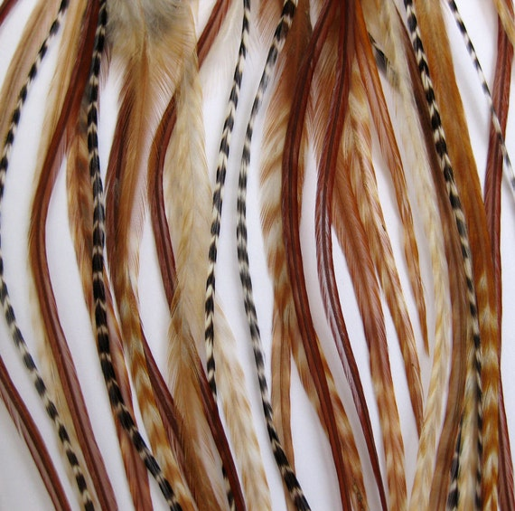 Natural 6 Feather Hair Extension SHORT - salon grade : 2 FREE micro links