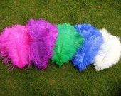 100pcs 6-8 inches ostrich feather,dyed ostrich feather,hair accessories feather,fashion accessories feather any color is available