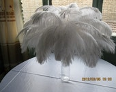 Discount item 100pcs ostrich feather for wedding table centerpiece,feather centerpiece,white ostrich feathers,wedding table decoration AAA