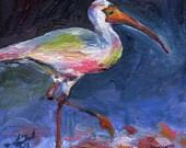 Ibis - Original Oil Painting 4x4 inches