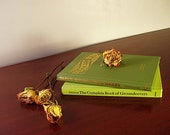 Vintage Gardening Books Decorative Green Covers Christmas Gift