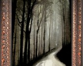 Framed & Signed Canvas Print By. Joseph Minton - Forest / Woods