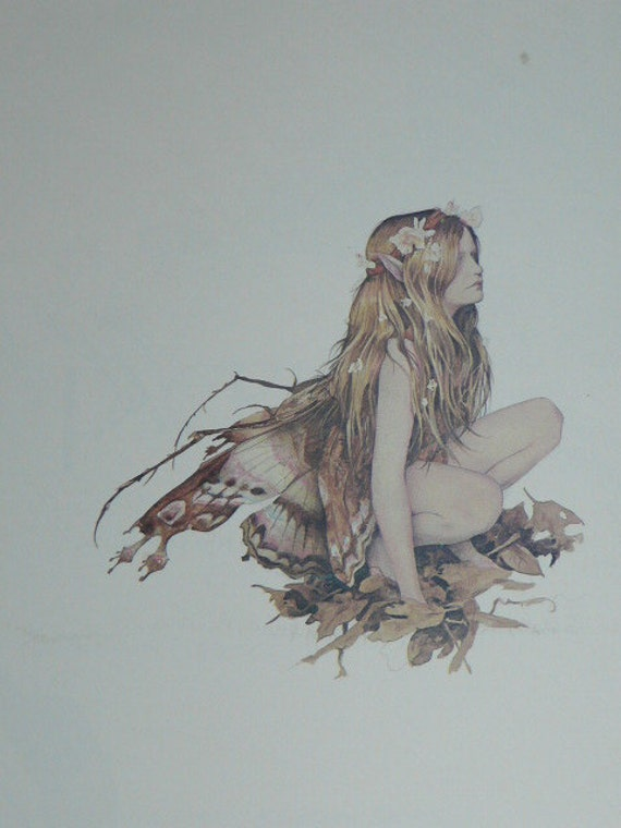 FAERIES Vintage 1978 Brian Froud Faerie Fairy Art Book Fantasy Illustrated Softcover Fairy Wings