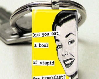 Domino Size Glass Metal Frame Key Chain-Did You Eat A Bowl Of Stupid For Breakfast Retro Humor Funny
