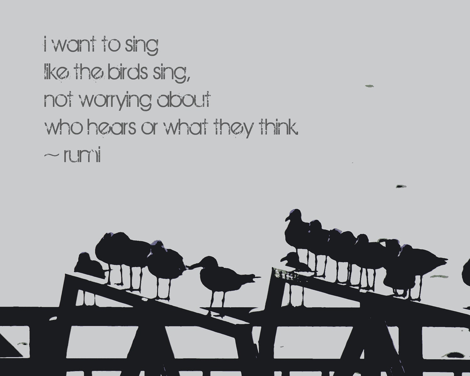Rumi Quotes: Inspirational Quote Photography Rumi Quote Seagulls Word