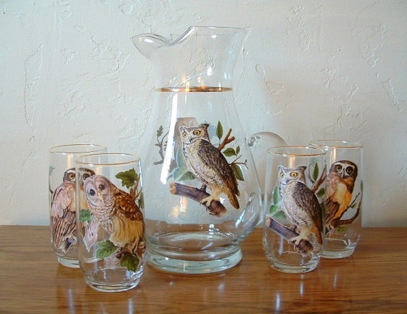 Vintage Owl Glasses Tumblers with Pitcher 5 Piece Set