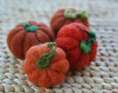 Tiny Harvest Pumpkins