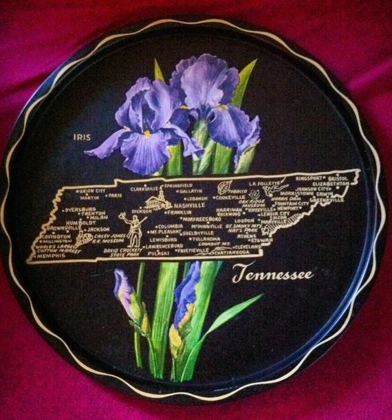 Vintage Tennessee Display Tin Tray