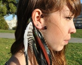 Feather Ear Cuff - Wire Feather Ear Cuff with Black Rooster Feathers, Grizzly Rooster Feathers, and Red Parrot Feathers, Unique LAST ONE