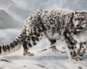 """World's Most Magnificant Cats Charles Frace 1991 """"Fleeting Encounter"""""""