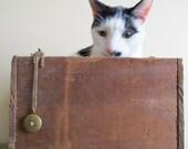 Secret Crazy Cat Lady Necklace